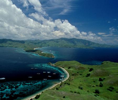 Pulau komodo satu dari 7 keajaiban dunia